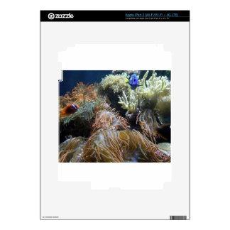 Aquarium Fish Skins For iPad 3