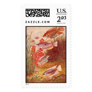 aquarium fish stamp postage