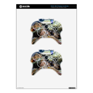 Aquarium Fish Xbox 360 Controller Skin