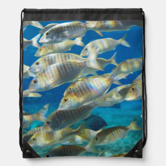 Aquarium In Ushaka Marine World, Durban Drawstring Backpack