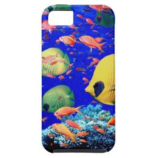 Aquarium iPhone Case iPhone 5 Cases