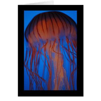 Aquarium Jellyfish Greeting Cards