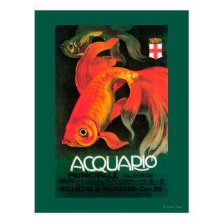 Aquarium & Municipal Park Promotional Poster Postcard
