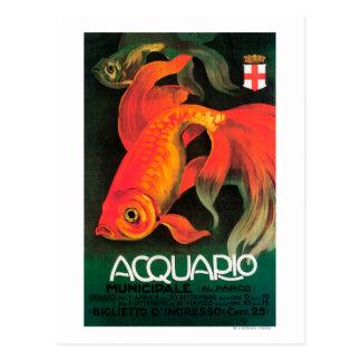 Aquarium & Municipal Park Promotional Poster Postcards