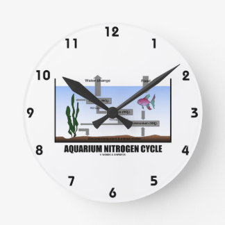 Aquarium Nitrogen Cycle (Ecology) Clocks