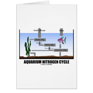 Aquarium Nitrogen Cycle (Ecology) Greeting Card