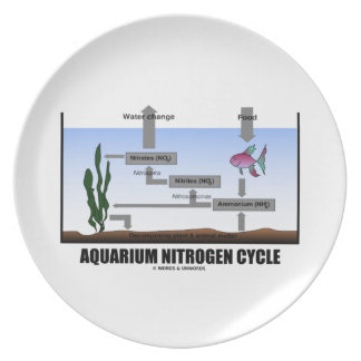 Aquarium Nitrogen Cycle (Ecology) Plates