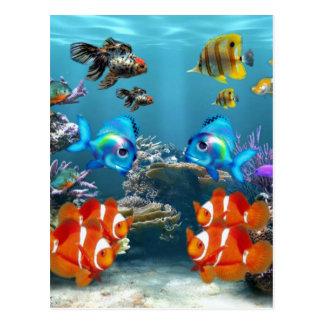 Aquarium Sea Postcard