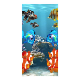 Aquarium Sealife Style Card