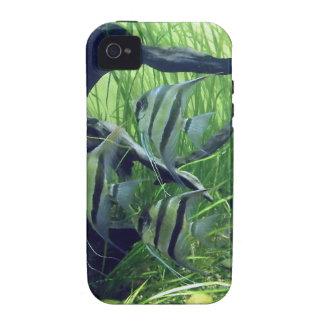 Aquarium Striped Fish Case-Mate iPhone 4 Covers