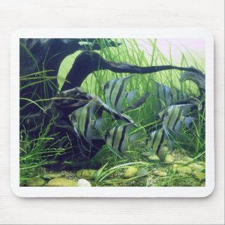 Aquarium Striped Fish Mousepad