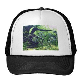 Aquarium Striped Fish Trucker Hat