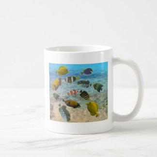 Aquarium with multicolor fishes coffee mug