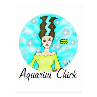 Aquarius Chick Postcard