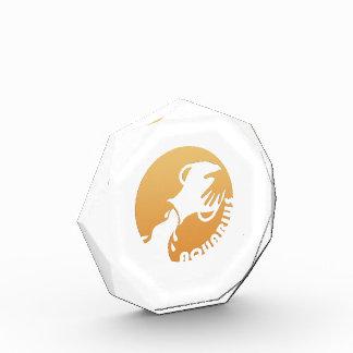 Aquarius Zodiac Sign Award