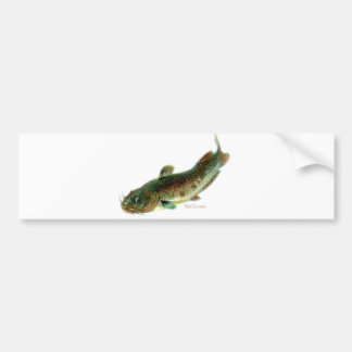 Aquatic Animal Art Car Bumper Sticker