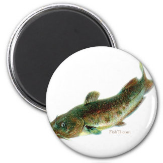 Aquatic Animal Art Magnet