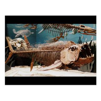 Aquatic Dino Postcard