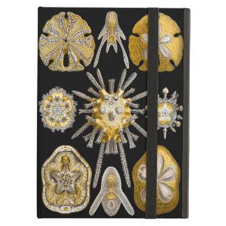 Aquatic Life ~ Haeckel ~ Sea Urchins Cover For iPad Air
