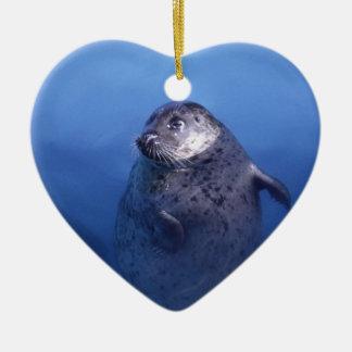 Aquatic Ornament