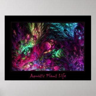 Aquatic Plant Life Posters