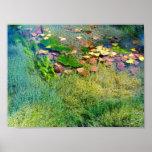 Aquatic Plants in Lincoln Park VI - Color Saturate Print