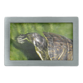 Aquatic turtle getting out of water belt buckle