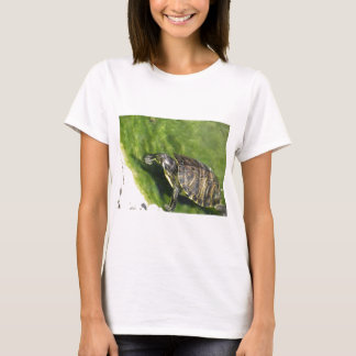 Aquatic turtle getting out of water T-Shirt