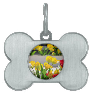 Aqueduct in the Spring Pet ID Tag