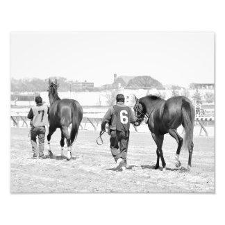 Aqueduct's Top Horses heading to the Paddock Photo Print