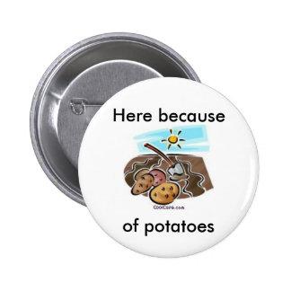 """Aquí debido a botón de las patatas"" Pin Redondo De 2 Pulgadas"