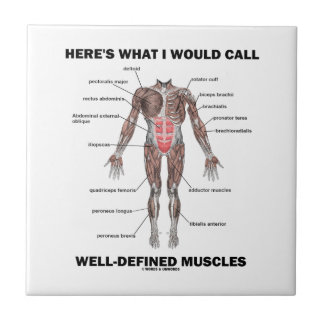 Aquí es lo que llamaría los músculos bien azulejo cuadrado pequeño