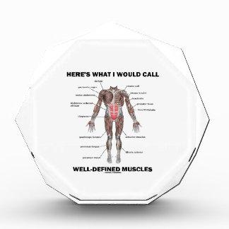 Aquí es lo que llamaría los músculos bien definido
