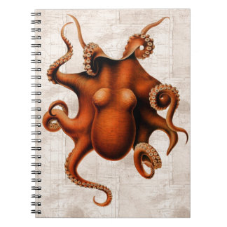 Aquí haya monstruos libro de apuntes con espiral