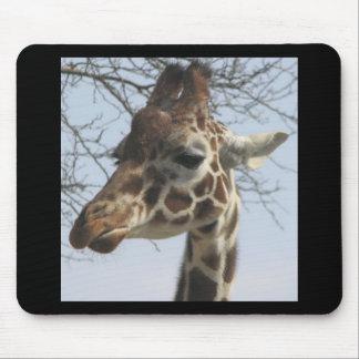Aquí le está mirando, jirafa alfombrillas de ratones