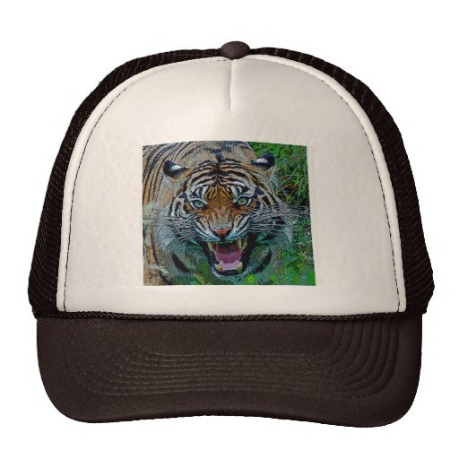 Aquí le está mirando tigre gorro
