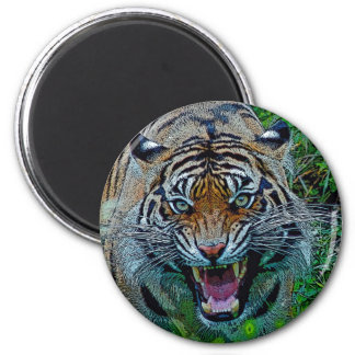 Aquí le está mirando tigre imán redondo 5 cm