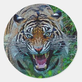 Aquí le está mirando tigre pegatina redonda
