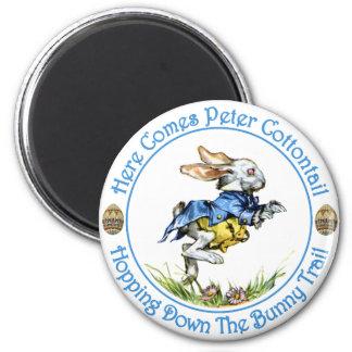 Aquí viene el conejo de rabo blanco de Peter Imán Redondo 5 Cm