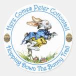 Aquí viene el conejo de rabo blanco de Peter Pegatina Redonda