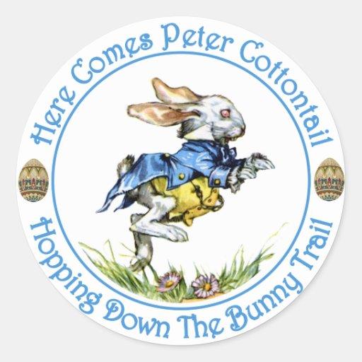 Aquí viene el conejo de rabo blanco de Peter Pegatinas Redondas