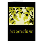 aquí viene la sol-tarjeta