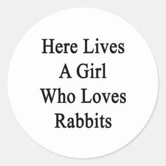 Aquí vive un chica que ama conejos pegatina redonda