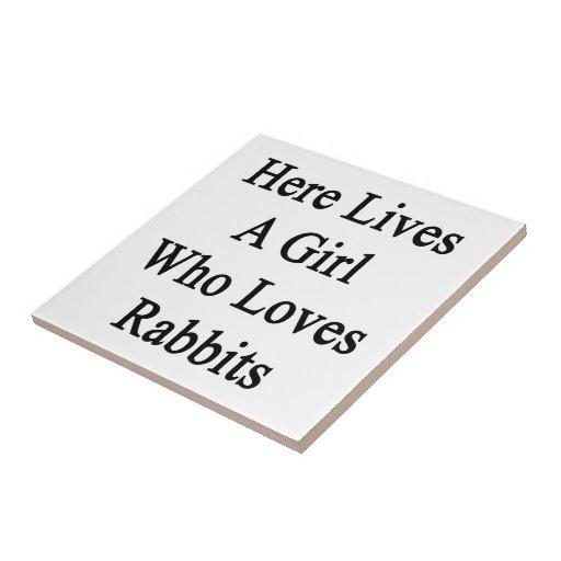 Aquí vive un chica que ama conejos teja