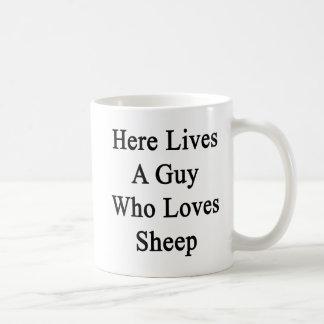Aquí vive un individuo que ama ovejas taza de café