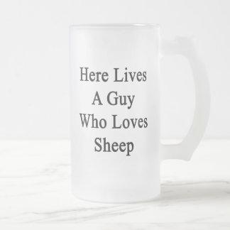 Aquí vive un individuo que ama ovejas tazas de café
