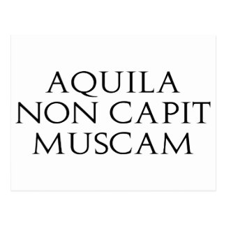 Aquila Non Capit Muscam Post Cards