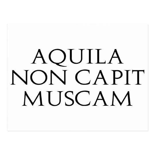 Aquila Non Capit Muscam Postcard