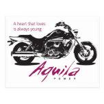 Aquila Yound en el corazón Tarjeta Postal