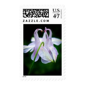 Aquilegia Flower (Aquilegia vulgaris) Postage